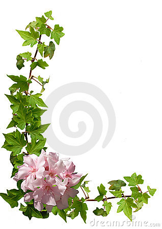 Free Floral Frame - Ivy, Oleander Royalty Free Stock Photo - 14468625