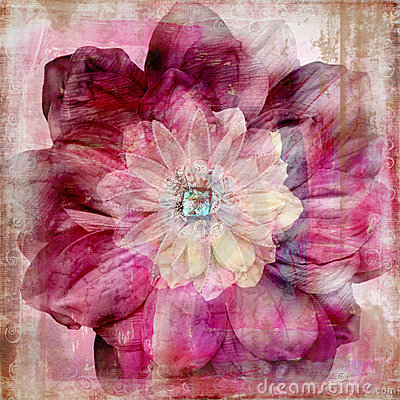 Free Floral Gypsy Bohemian Tapestry Scrapbook Background Royalty Free Stock Photo - 1855285
