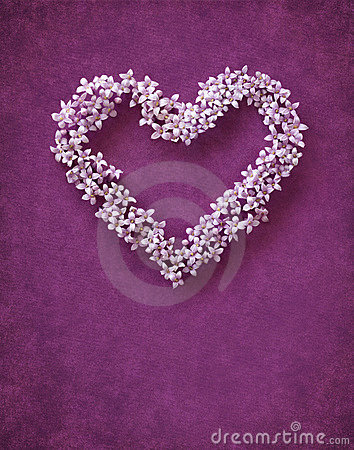 Free Floral Heart Shape Stock Photos - 7985443