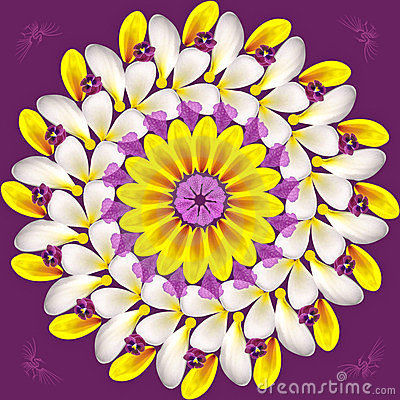 Floral mandala on purple background