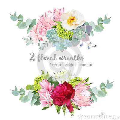 Free Floral Mix Wreath Vector Design Set. Green, White And Pink Hydrangea, Wild Rose, Protea, Succulents, Echeveria, Burgundy Red Peony Royalty Free Stock Photo - 75738695