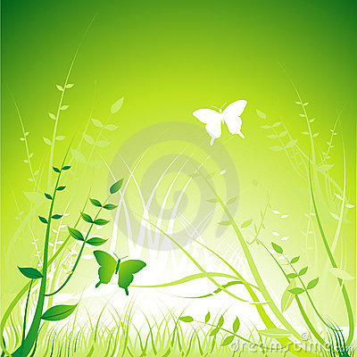 Floral ornament - Vector