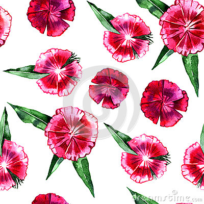 Free Floral Pattern. Flower Pink Carnation Seamless Background. Royalty Free Stock Photo - 95977995