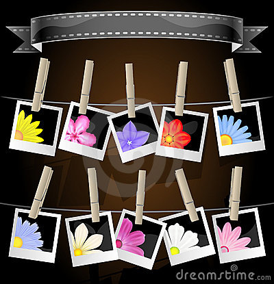 Floral photo album display