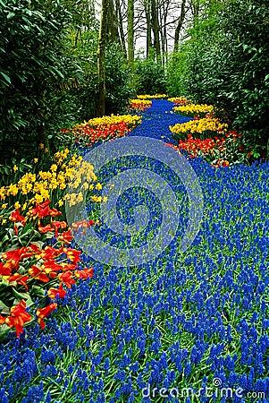 Floral river
