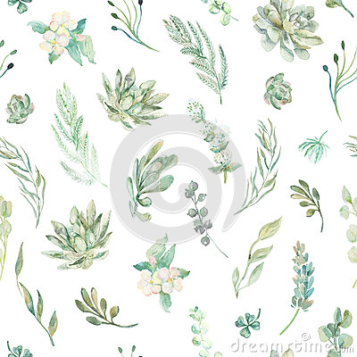 Free Floral Seamless Pattern. Succulents, Ferns, Thorns Royalty Free Stock Photography - 64905237