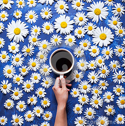 Free Floral Summer Background. A Mug Of Coffee In A Woman`s Hand On A Blue Background With Chamomile Or Daisies. Hello Summer Stock Photography - 93729932