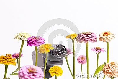 Floral Surveillance