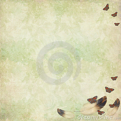 Floral texture with bird feathers and butterflies