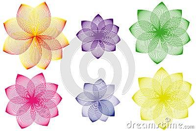 Floral variations