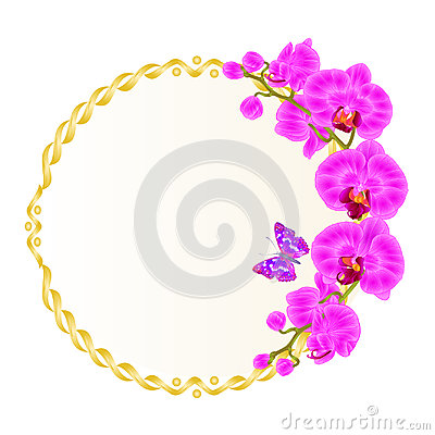 Free Floral Vector Round Golden Frame With Orchids Purple Flowers Tropical Plants Phalaenopsis And Cute Small Butterfly Vintage Royalty Free Stock Photo - 94697505