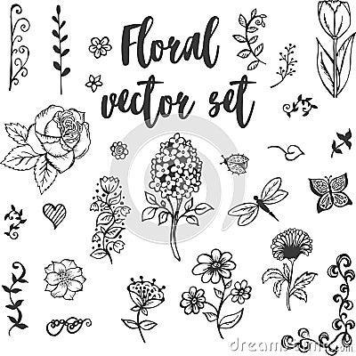 Free Floral Vector Set Stock Photos - 93508913