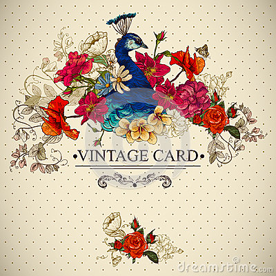 Free Floral Vintage Card With Peacock Stock Photos - 38790143