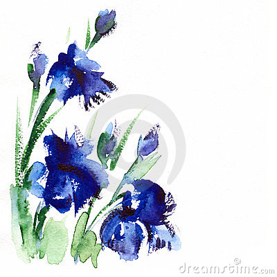 Floral   Watercolor  Illustration Royalty Free Stock Images - Image: 21428369