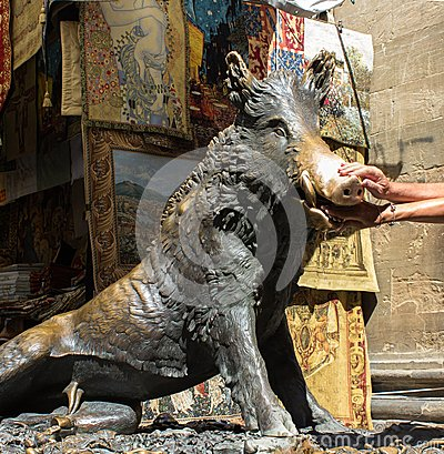 Free Florence, The Statue Of The Boar Royalty Free Stock Photo - 43428715