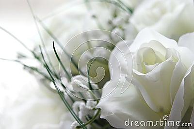 Proponer a una mujer que no se cubre con la esperanza de que cambie. Flores-blancas-thumb292310