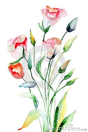Flores del verano