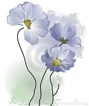 Resultado de imagem para imagens de flores delicadas