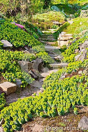 Flores E Pedras No Jardim Na Corredi?a Alpina Imagem de ...