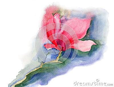 Flores hermosas de la magnolia