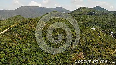 Floresta tropical na ilha Opini?o fant?stica do zang?o da selva verde no cume da montanha de surpreender a ilha tropical exotic video estoque