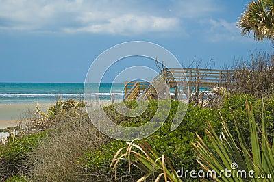 Florida Beach near St Augustine