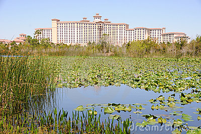 Florida Hotel near Marshland and Pond