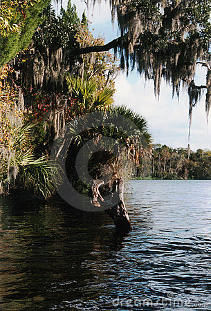 Florida River Style