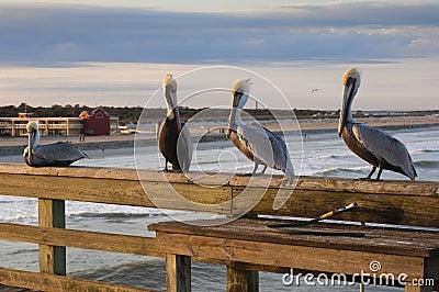 Florida - St. Augustine