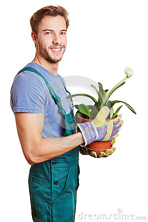 Florist with paintbrush plant