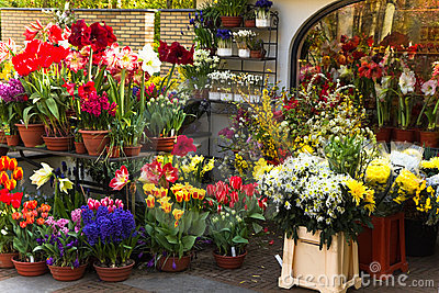 Florist shop with colorful spring flowers