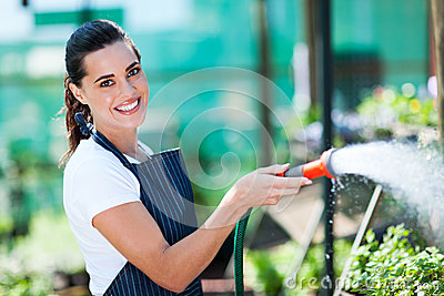 Florist watering flowers