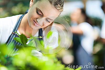 Florist working garden
