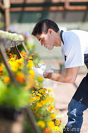 Florist working nursery