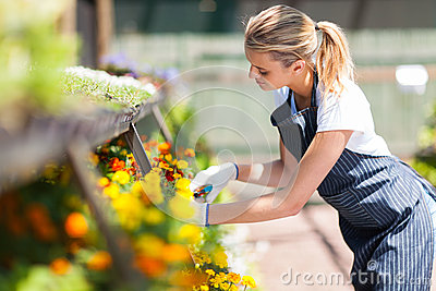 Florist working in nursery