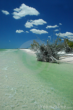 Florydy sceniczny plaży