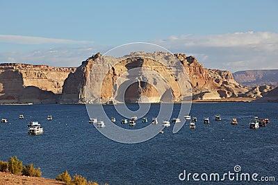 Flotilla of elegant white yachts