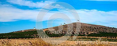 Flour mills. Consuegra. La Mancha