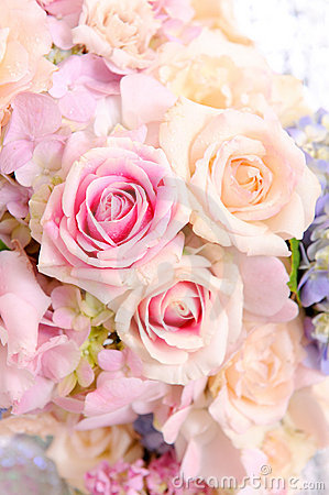 Free Flower Royalty Free Stock Photography - 21614787