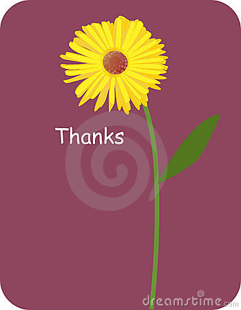 Flower background for thankyou