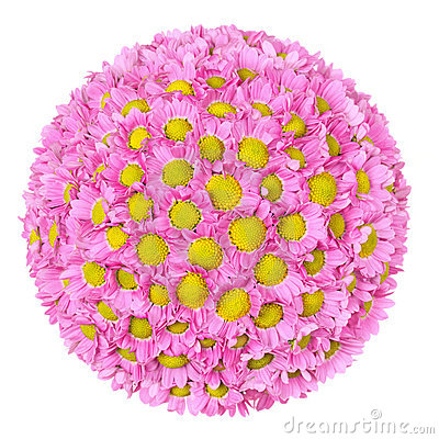 Free Flower Ball Royalty Free Stock Photography - 18477957