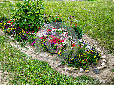 A flower bed in the garden stock photo image 69254525 for Ornamental trees for flower beds