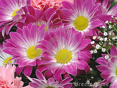 Flower bouquet background