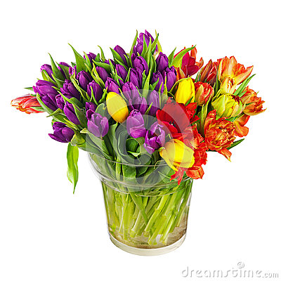 Free Flower Bouquet From Colorful Tulips In Glass Vase Isolated. Stock Photos - 51435133