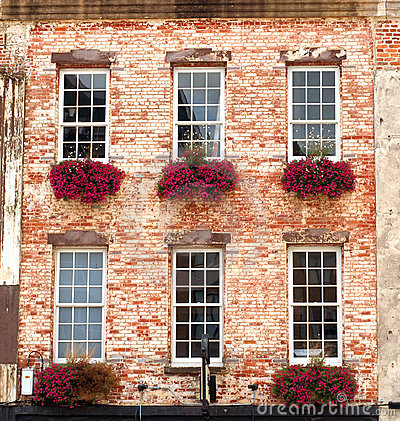 Flower Boxes in Windows