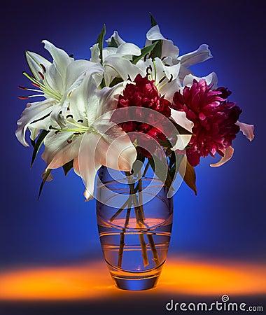 Flower Display - Still Life (Light Painting)