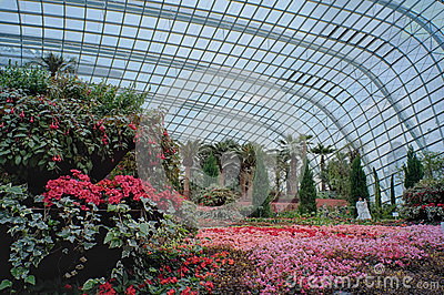 Flower Dome, Gardens by the Bay Editorial Stock Photo