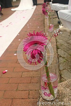 Flower Down the Aisle