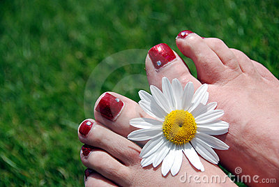 Flower and feet