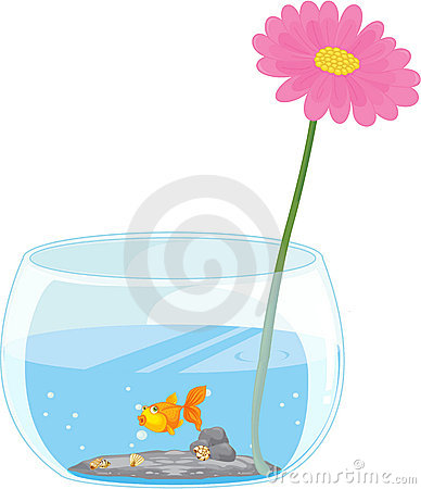 Flower and fish pond